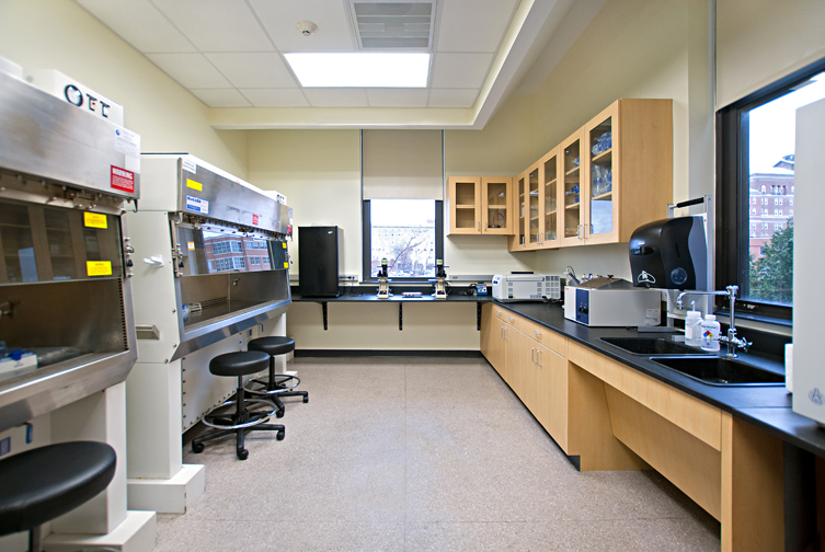 Image Gallery microbiology lab